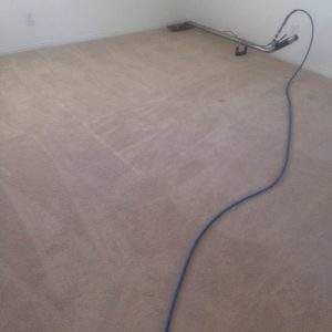 carpet cleaning fullerton