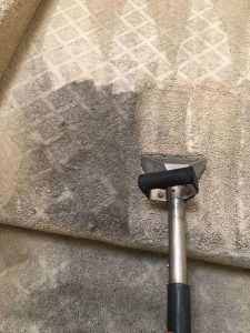 costa mesa carpet cleaning