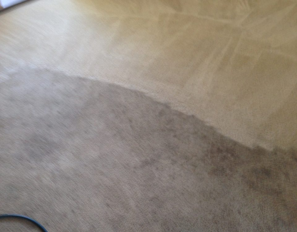 carpet cleaning service in Dana Point