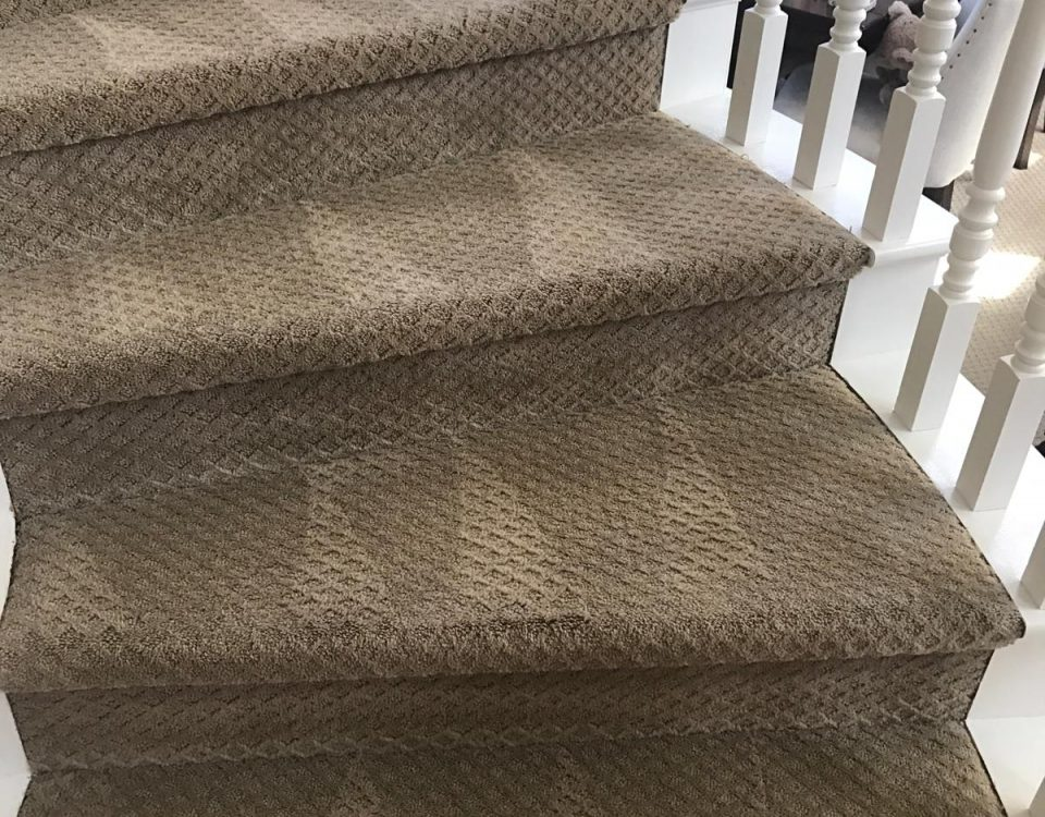 carpet cleaning in laguna niguel california