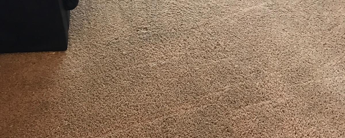 carpet cleaning in laguna hills california